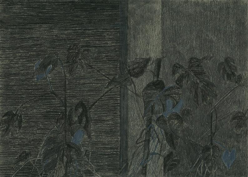 Nora Mesaros - Untitled - 2018 - Graphit und Zeichenkohle auf Papier - 21 x 29,7 cm