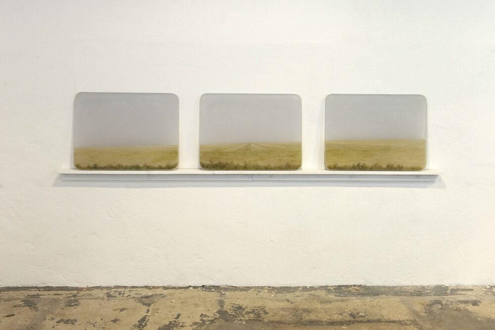 Ayelen Coccoz - Windowpane - 2010-11 - Basrelief aus Polyurethanharz, Pigmenten, Ölfarbe, eingebettet in Polyesterharz - 3 Scheiben von je 60 x 80 x 3 cm
