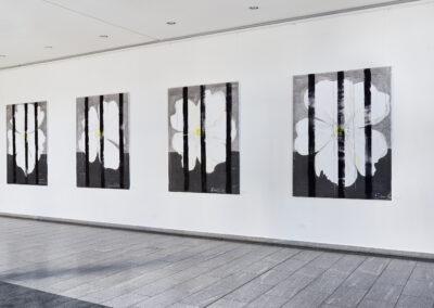 """Heike Berl - WEISSE ROSE I-IV (Serie) - Ausstellungsansicht """"WEISSE ROSE - Natur und Symbol"""", Sächsische Landesärztekammer, Dresden, 2020"""